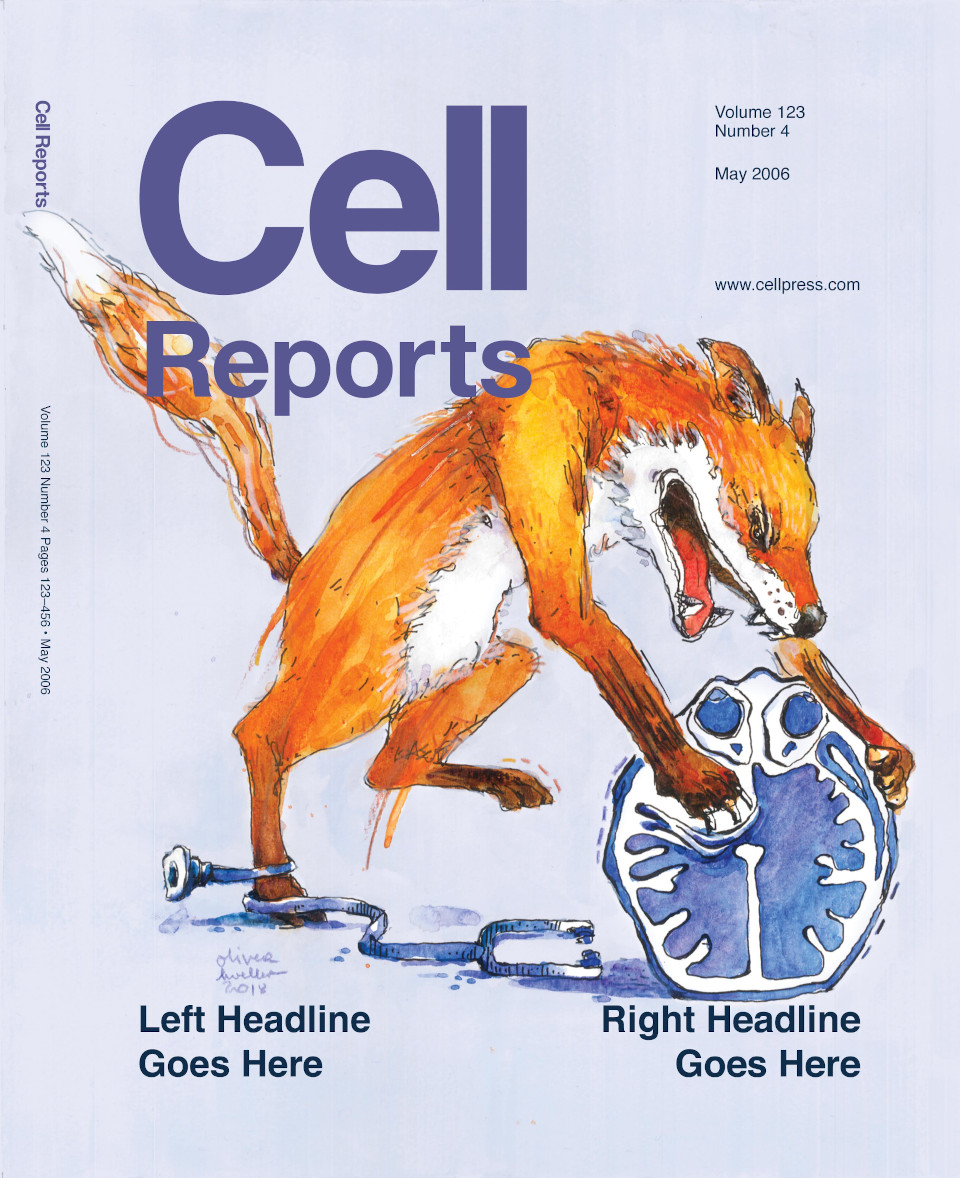 Cell Reports Cover_960x1178_72dpi